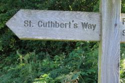 St Cuthbert's Way signpost in the countryside
