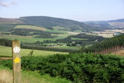 Looking across hills and countryside through the Tweed Valley