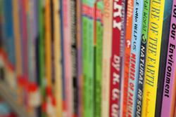 Row of brightly coloured books